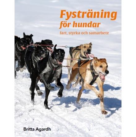 Fysträning för hundar: Fart, styrka och samarbete