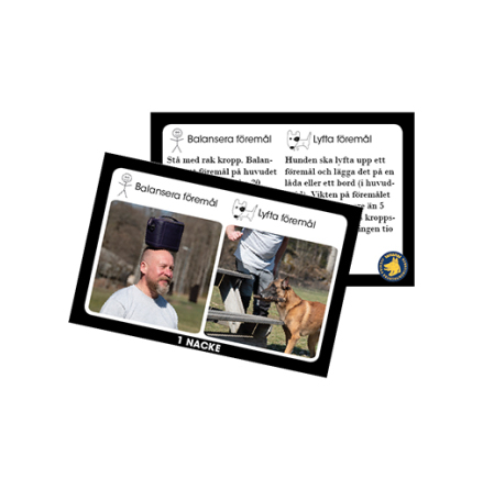 Aktivitetslek Sund med Hund
